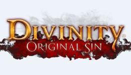 играть Divinity: Original Sin по сети