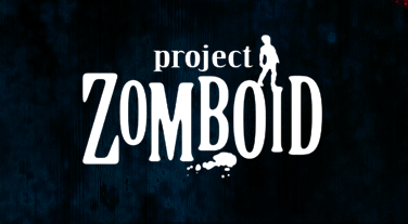 играть Project Zomboid по сети