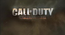 играть Call of Duty: World at War по сети